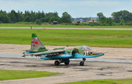 31 - Belarus - Air Force Sukhoi Su-25 aircraft