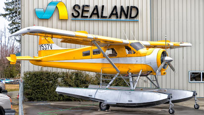N1537V - Private de Havilland Canada DHC-2 Beaver