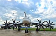 RF-94128 - Russia - Air Force Tupolev Tu-95MS aircraft