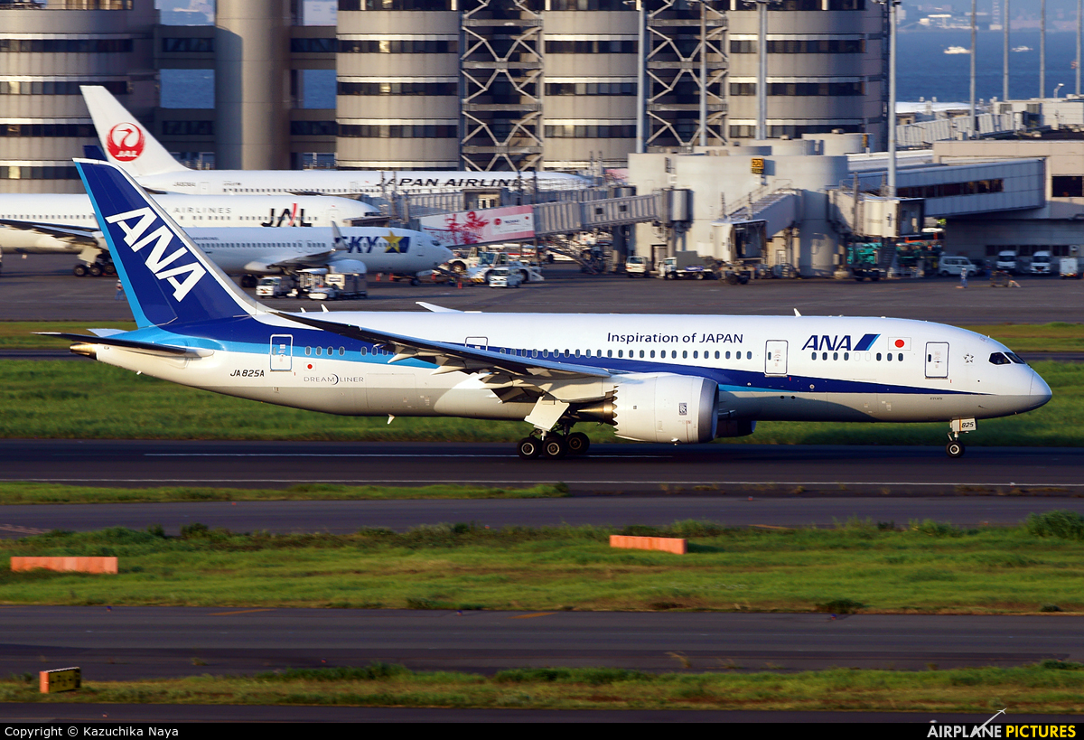 ANA - All Nippon Airways JA825A aircraft at Tokyo - Haneda Intl