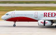 Red Wings VP-BRM image