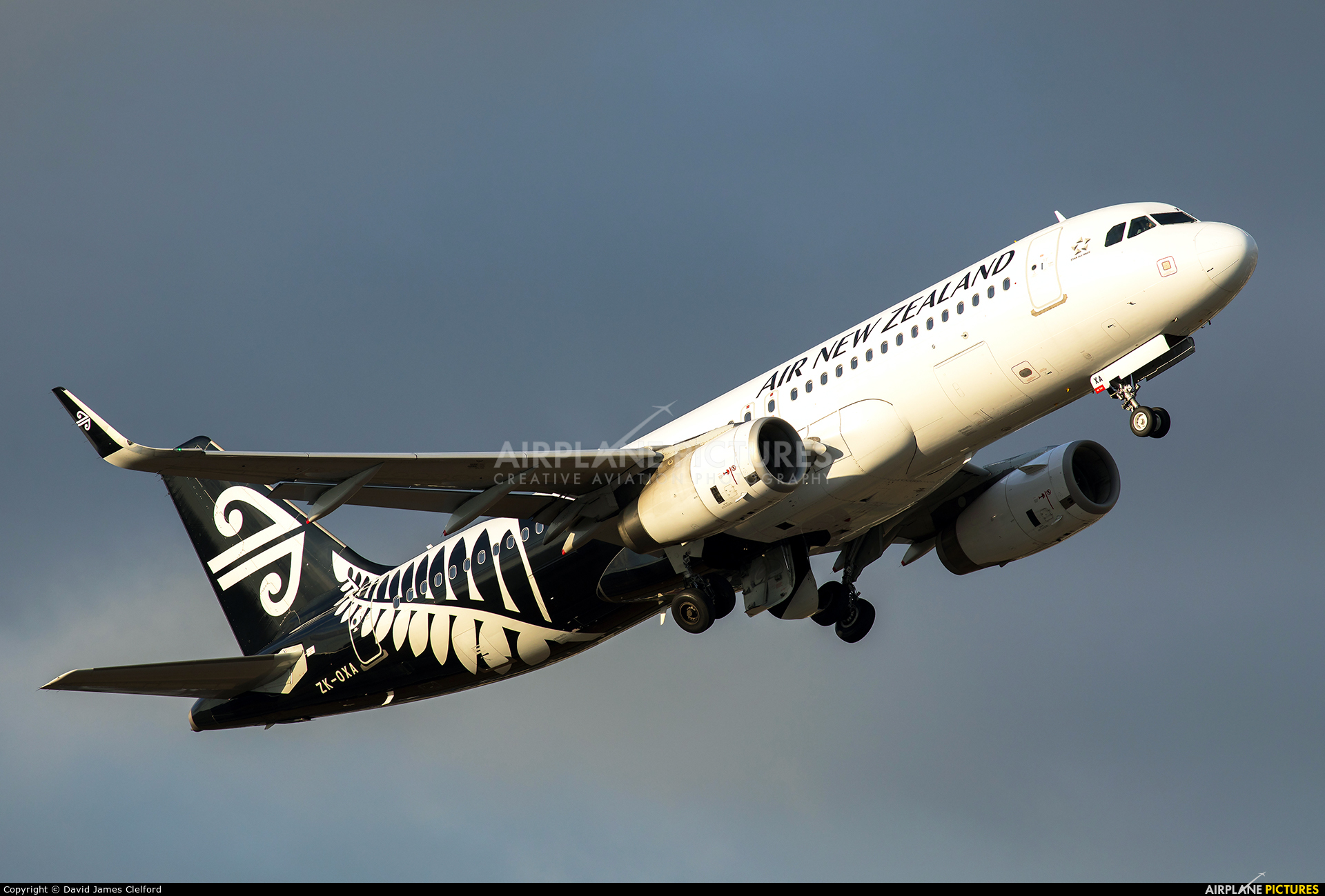 Air New Zealand ZK-OXA aircraft at Wellington Intl