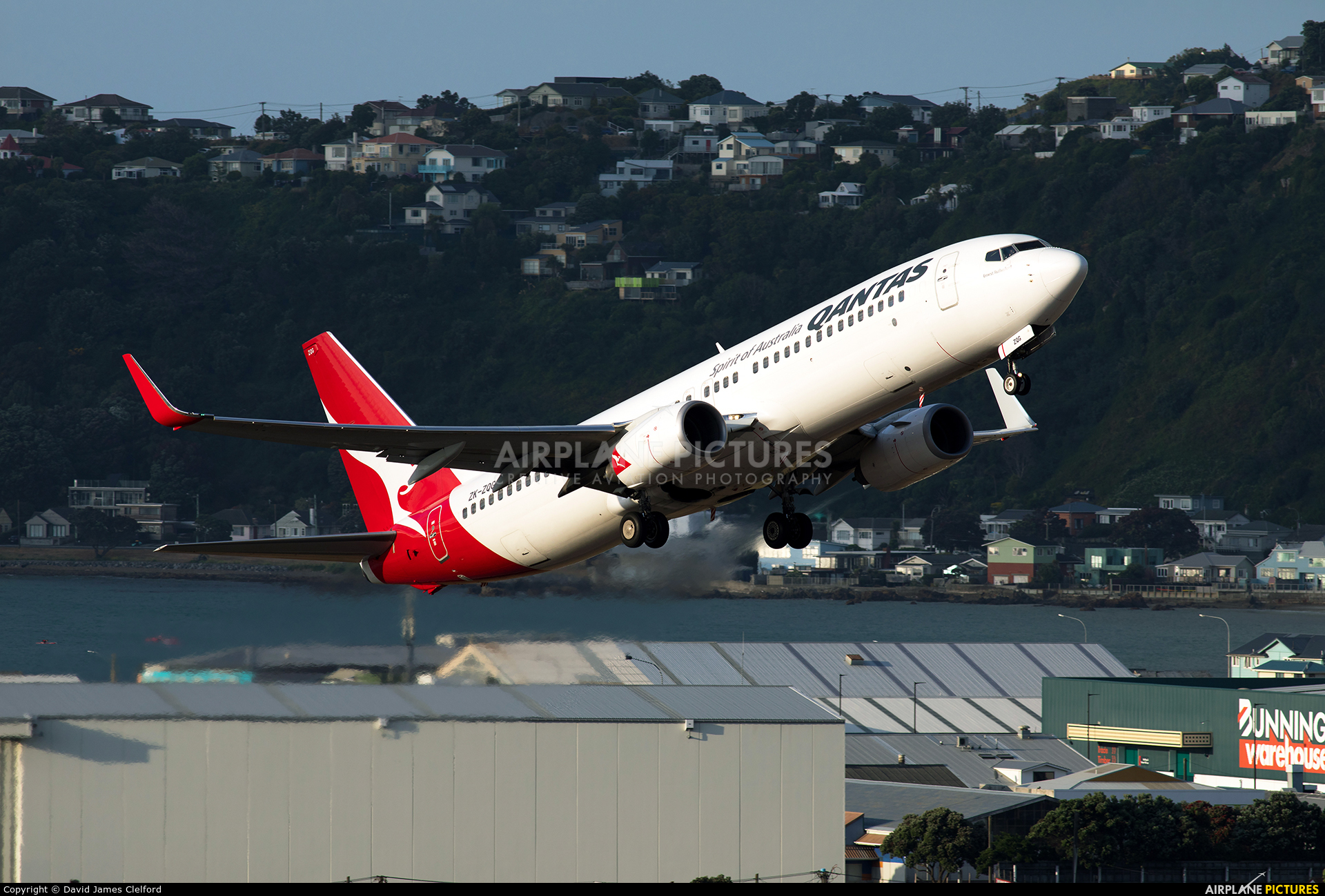 JetConnect (Qantas NZ) ZK-ZQG aircraft at Wellington Intl