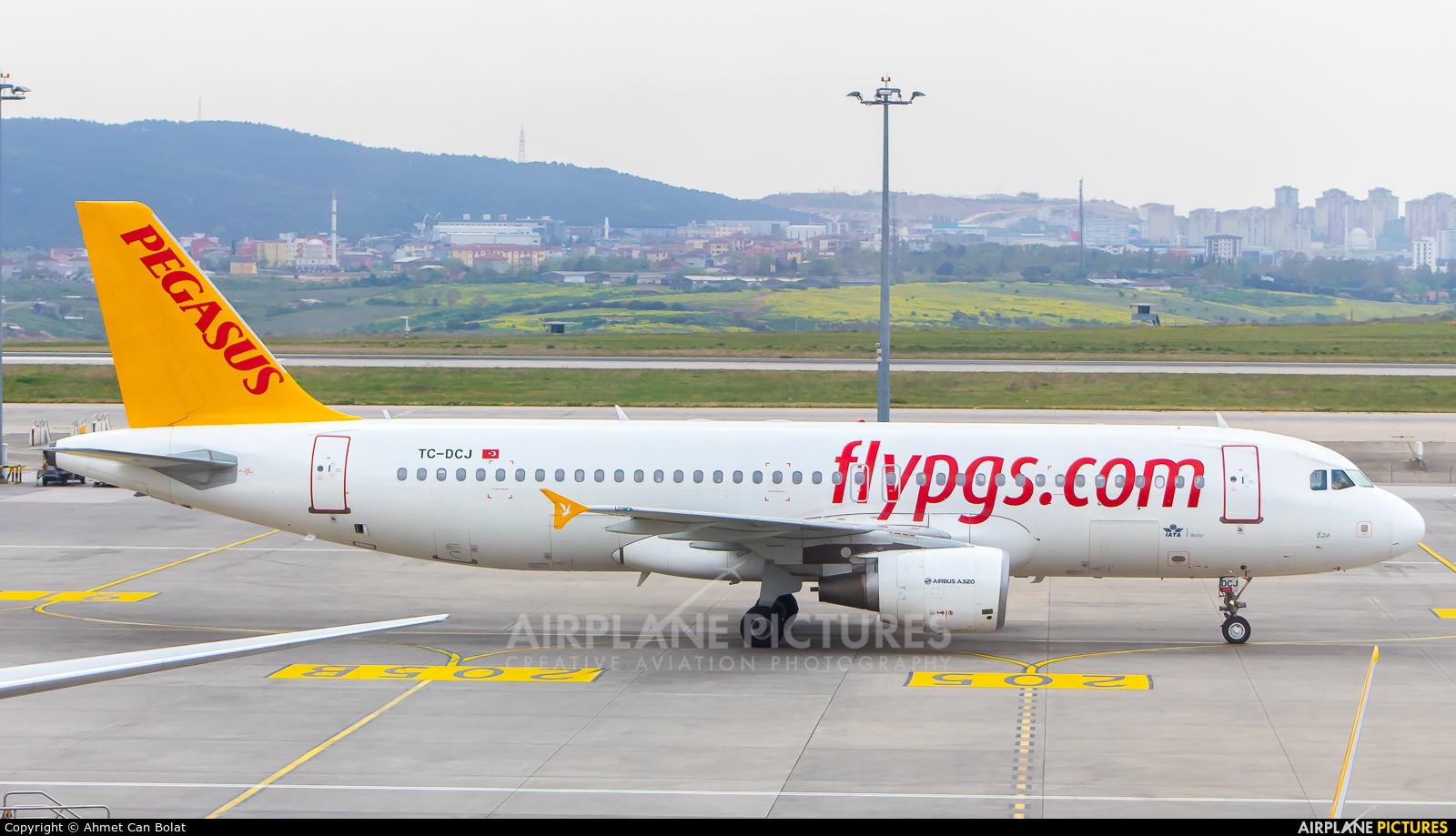 Pegasus TC-DCJ aircraft at Istanbul - Sabiha Gokcen