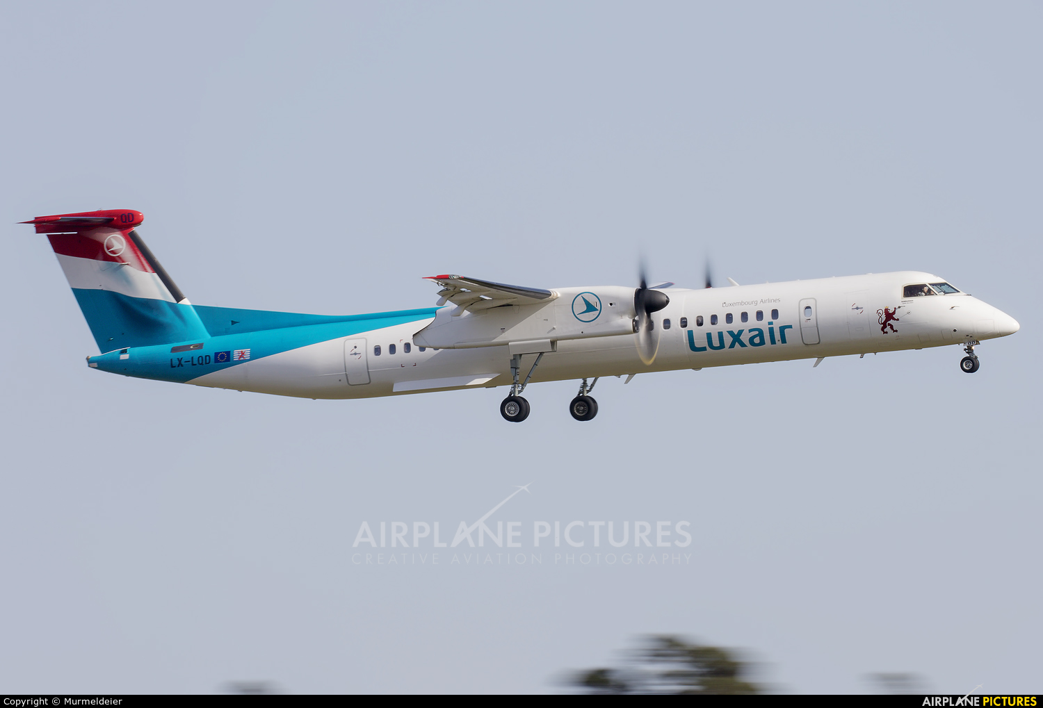 Luxair LX-LQD aircraft at Luxembourg - Findel