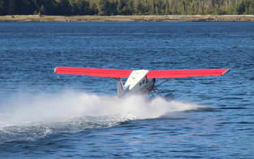 N1117F - Island Wings de Havilland Canada DHC-2 Beaver