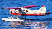 N1117F - Island Wings de Havilland Canada DHC-2 Beaver aircraft
