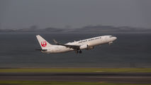 JA341J - JAL - Japan Airlines Boeing 737-800 aircraft