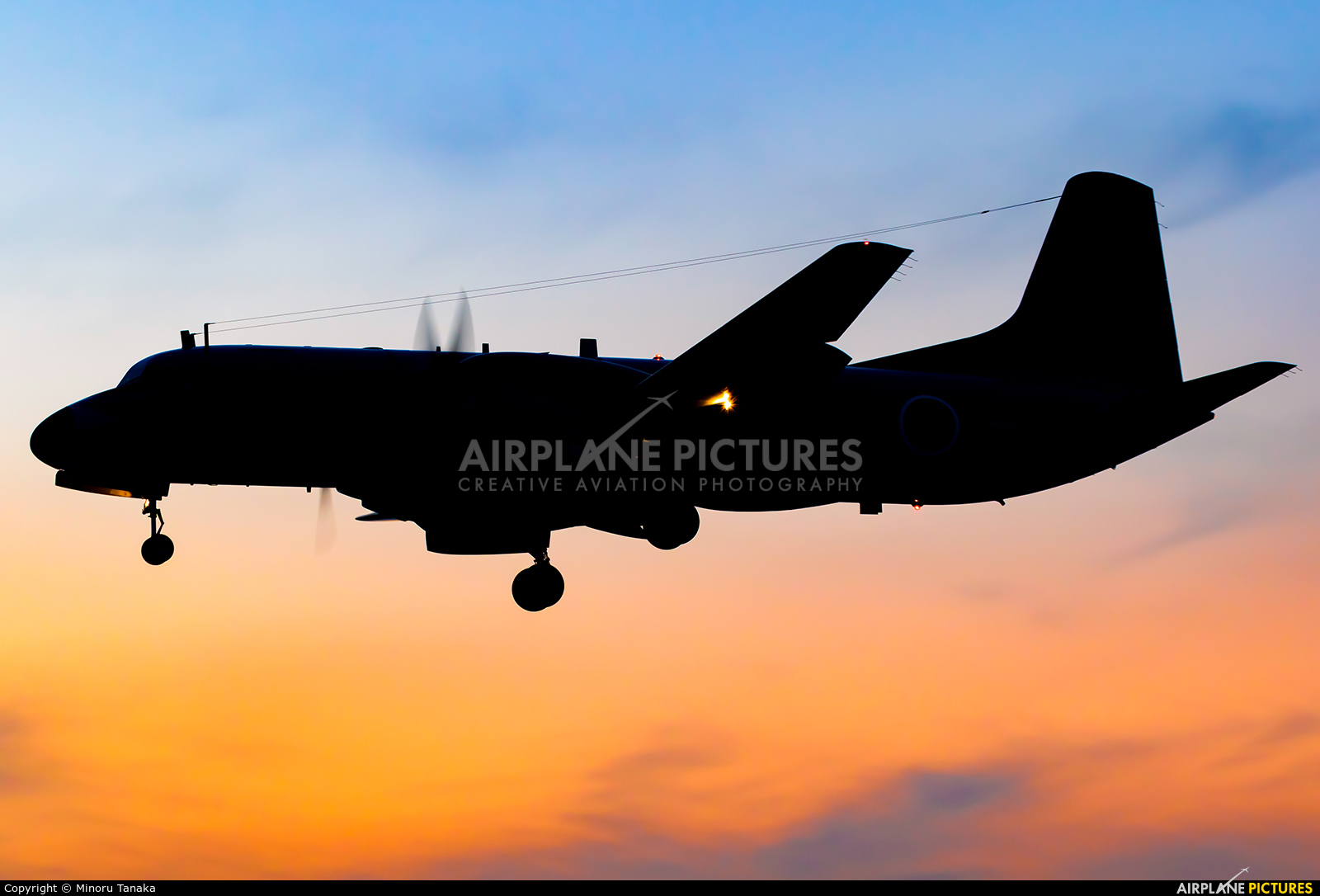 Japan - Air Self Defence Force 12-1162 aircraft at Iruma AB