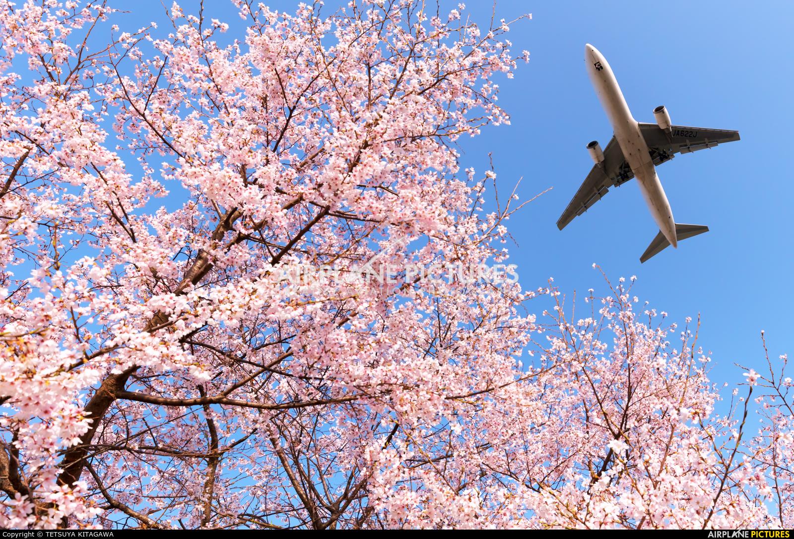 JAL - Japan Airlines JA622J aircraft at Osaka - Itami Intl