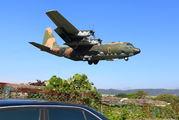 1316 - Taiwan - Air Force Lockheed C-130H Hercules aircraft