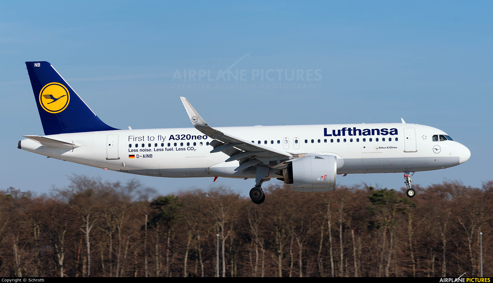 Lufthansa D-AINB aircraft at Frankfurt