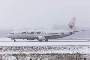 JA302J - JAL - Japan Airlines Boeing 737-800