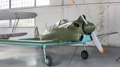 19 - Poland - Air Force Yakovlev Yak-18