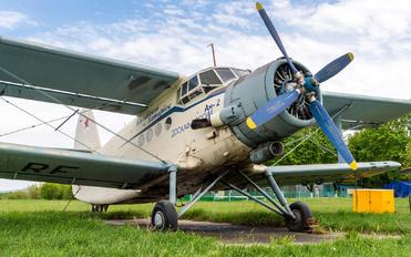 RF-00773 - DOSAAF / ROSTO Antonov An-2