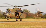 1226 - South Africa - Air Force Denel Oryx aircraft
