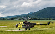 0820 - Slovakia -  Air Force Mil Mi-17 aircraft