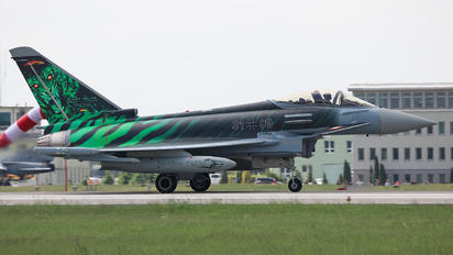 3100 - Germany - Air Force Eurofighter Typhoon S