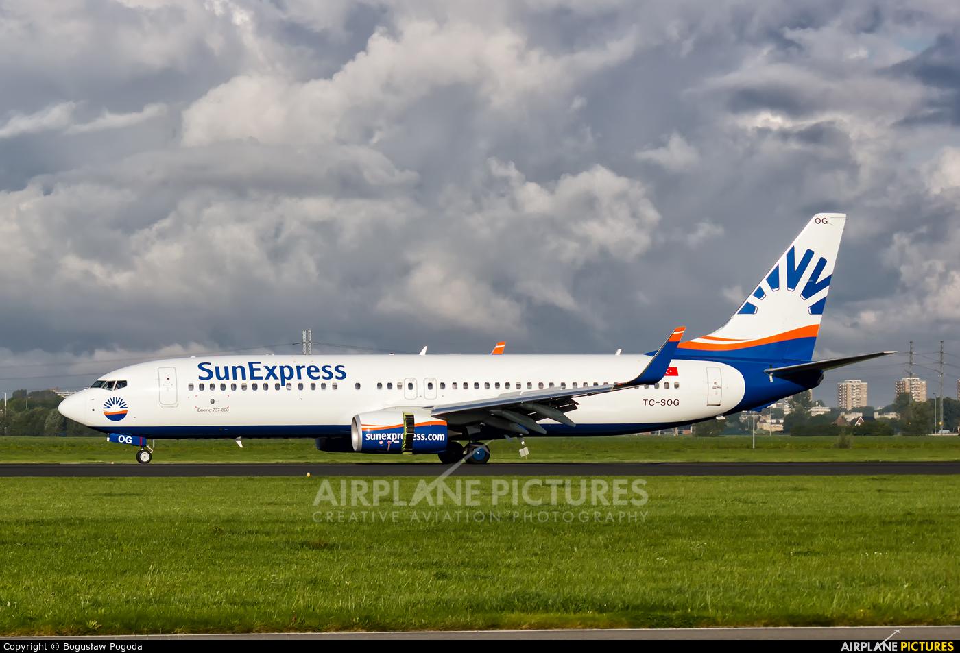 SunExpress TC-SOG aircraft at Amsterdam - Schiphol
