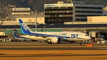 ANA - All Nippon Airways JA819A image