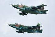 03 - Russia - Air Force Sukhoi Su-25SM aircraft