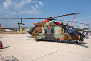 HT.29-04 - Spain - Army NH Industries NH-90 TTH aircraft
