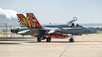 C.15-14 - Spain - Air Force McDonnell Douglas F/A-18A Hornet