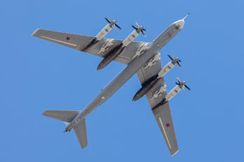 RF-94122/20 - Russia - Air Force Tupolev Tu-95MS