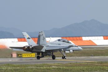 242-06 - USA - Marine Corps McDonnell Douglas F-18B Hornet