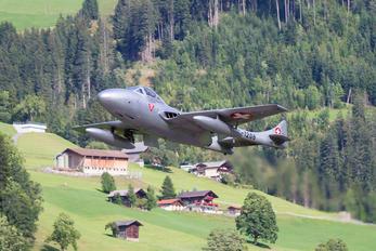HB-RVF - Private de Havilland DH.115 Vampire T.55
