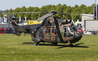 S-459 - Netherlands - Air Force Aerospatiale AS532 Cougar aircraft