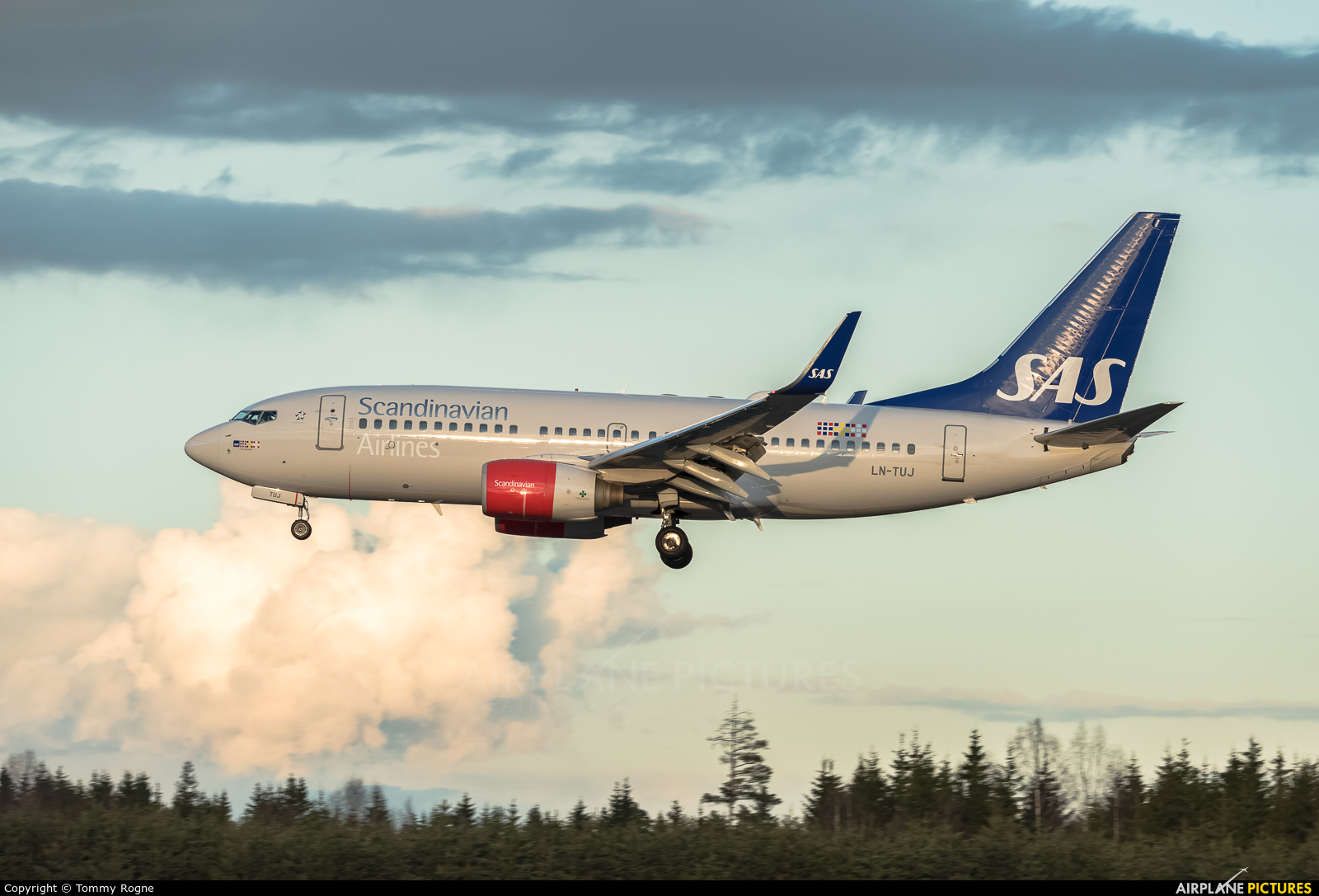 SAS - Scandinavian Airlines LN-TUJ aircraft at Oslo - Gardermoen