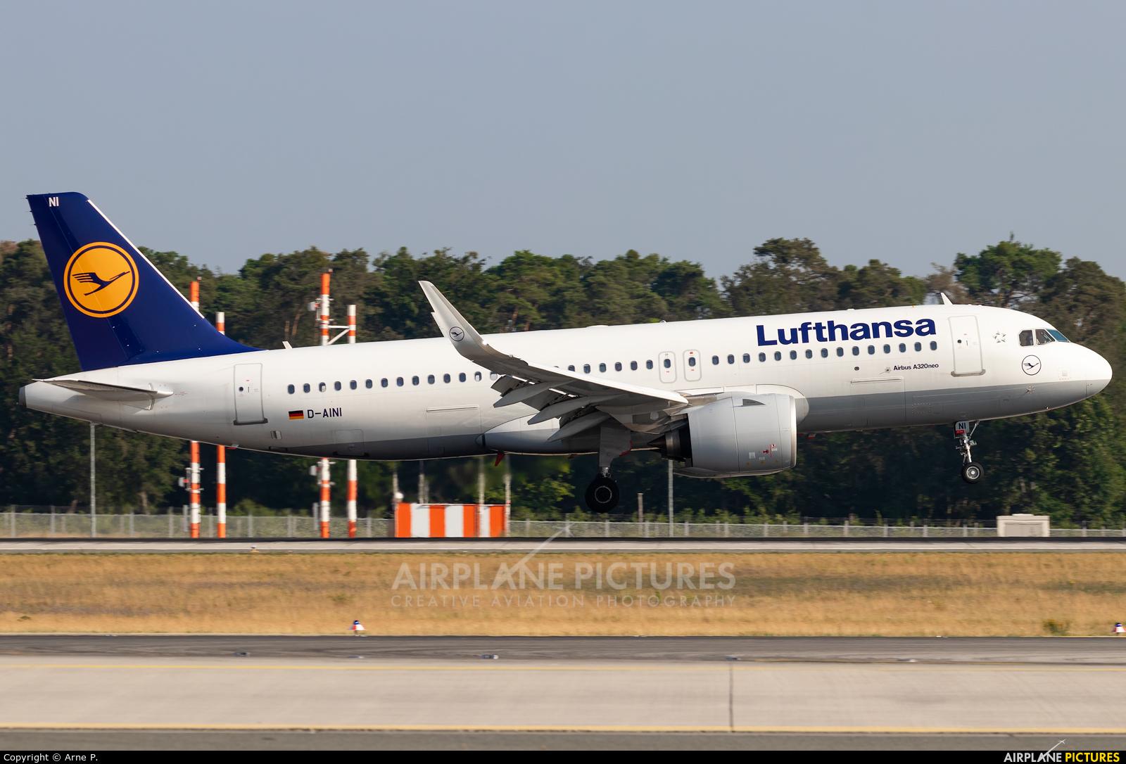 Lufthansa D-AINI aircraft at Frankfurt