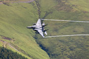 98-0135 - USA - Air Force McDonnell Douglas F-15E Strike Eagle aircraft