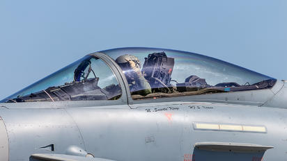 30+93 - Germany - Air Force Eurofighter Typhoon S