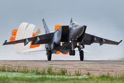 95 - Russia - Air Force Mikoyan-Gurevich MiG-25PU aircraft