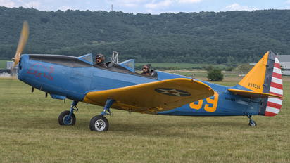 N50429 - The Flying Bulls Fairchild PT-19