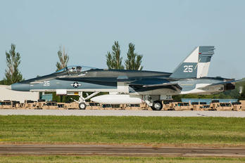 163733 - USA - Navy McDonnell Douglas F/A-18C Hornet