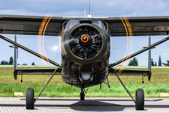 F-GDSN - Amicale Alanconnaise des Avions Anciens Max Holste MH.1521 Broussard