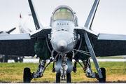 HN-428 - Finland - Air Force McDonnell Douglas F-18C Hornet aircraft