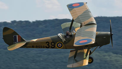 N9503 - Private de Havilland DH. 82 Tiger Moth