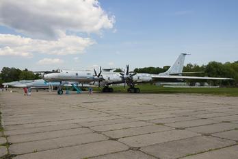 85 - Ukraine - Navy Tupolev Tu-142MZ