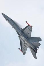 HN-435 - Finland - Air Force McDonnell Douglas F-18C Hornet