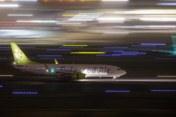 JA808X - Solaseed Air - Skynet Asia Airways Boeing 737-800