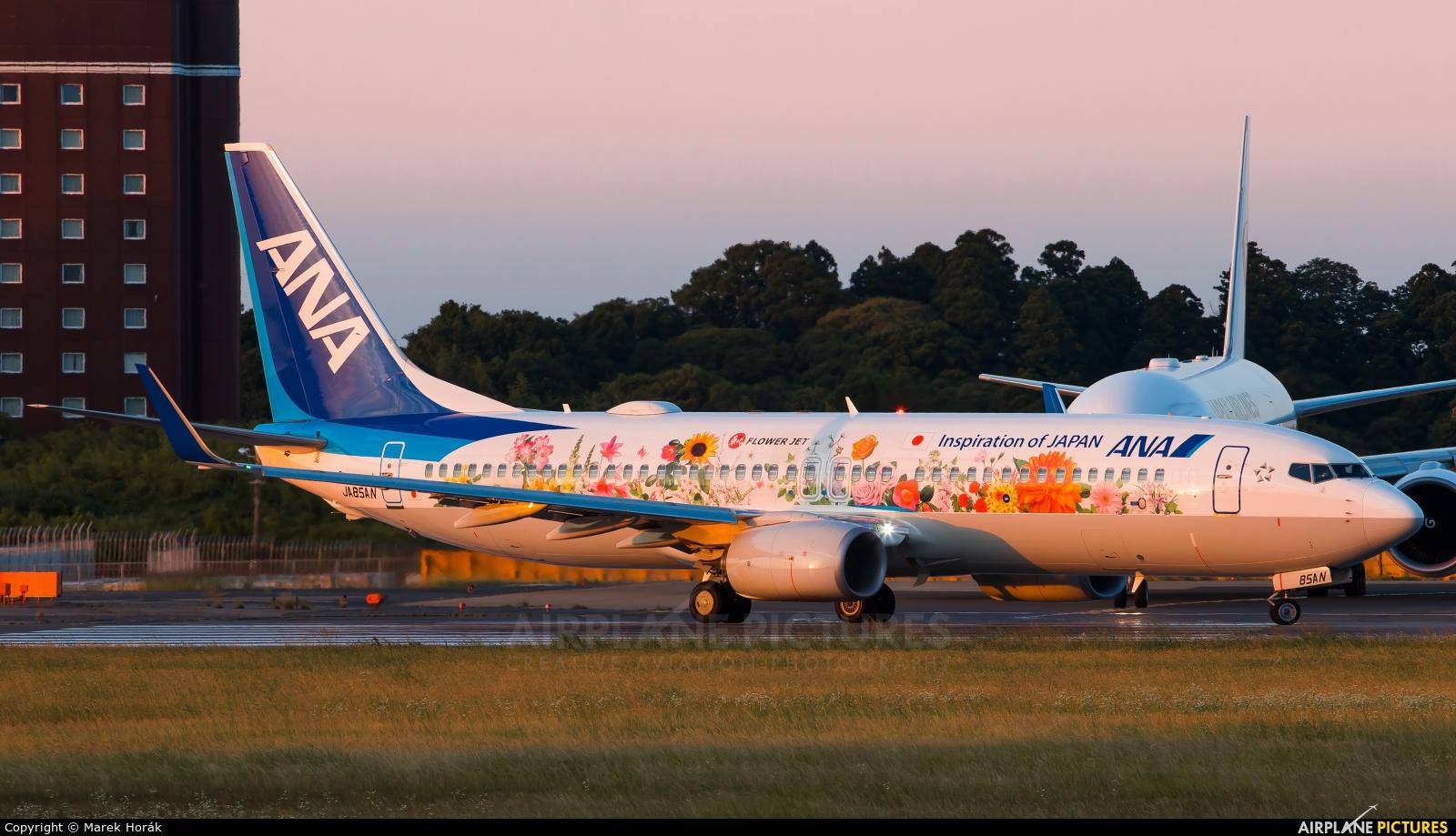 ANA - All Nippon Airways JA85AN aircraft at Tokyo - Narita Intl