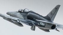 6064 - Czech - Air Force Aero L-159A  Alca aircraft