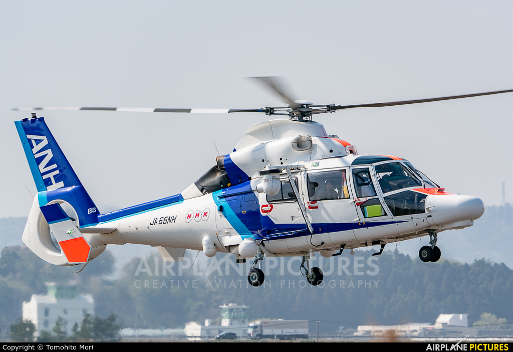 ANH - All Nippon Helicopter JA65NH aircraft at Sendai