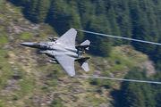 91-0135 - USA - Air Force Boeing F-15E Strike Eagle aircraft