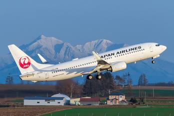JA334J - JAL - Japan Airlines Boeing 737-800