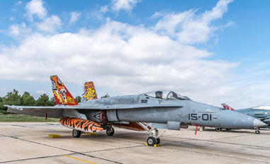 C.15-14 - Spain - Air Force McDonnell Douglas F/A-18A Hornet
